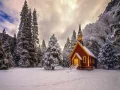 природа, красивый, снег