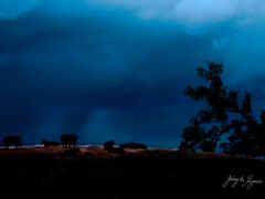 облако, коровы, буря