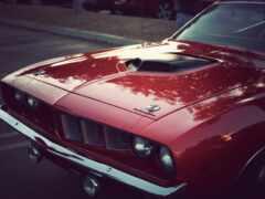 car, muscle, hemus