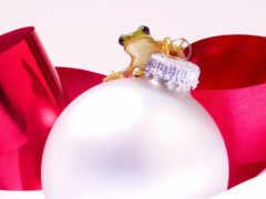 ornament, frog