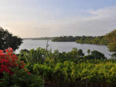 природа, landscape, озеро