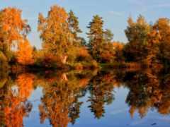 осень, природа, регистрации