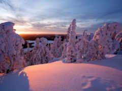 snow, desktop