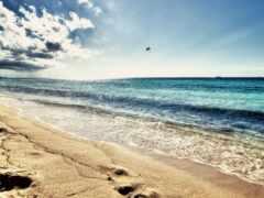 funart, море, пляж