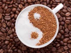 coffee, красивый, seed
