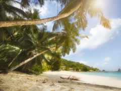 pantalla, playa, fondos