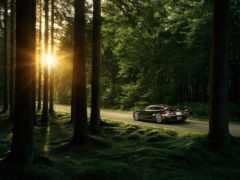 авто, автомобили, лес