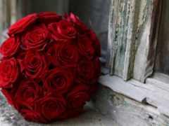 cvety, букет, роз