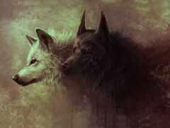волк, dark, black