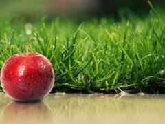 трава, яблоко, fon