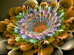 цветы, palm, fractal