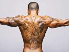 bodybuilding, коллекциях, яndex