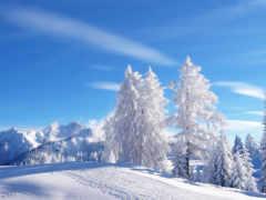 winter, wash, палуба