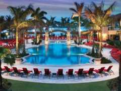palm, пляж, hotel