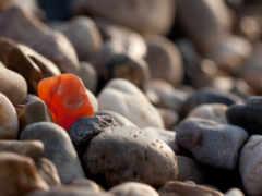 камни, галька, камушки