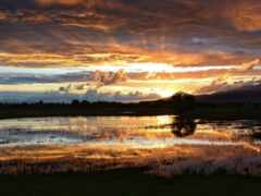 закат, озеро, swamp