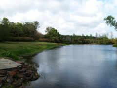 река, летом, спокойная