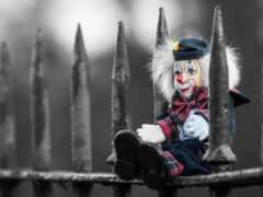 toy, doll, забор