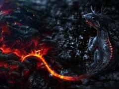 дракон, графика, shirokoformatnyi