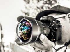 фотографий, фотографа, фотографы