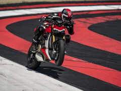 ducatus, streetfighter, panigale