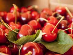fruits, плод