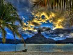 пальмы, пляж, tropics