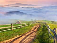 природа, деревня, луга