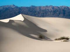 dune, пустыня, смерть