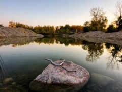 камень, камни, water