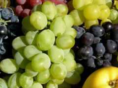 pantalla, fruta, плод