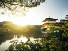japanese, cheerful, hotan