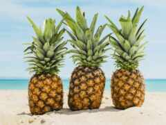 pineapple, пляж, summer