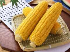 corn, вареная, кукурузу