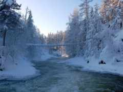 national, oulanka, trail