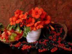 плод, натюрморт, ваза