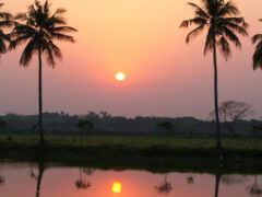 закат, деревня, пальмы