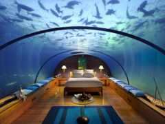 под, водой Фон № 17855 разрешение 4256x2832