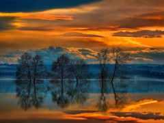 природа, collector, закат