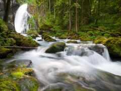 природа, sound
