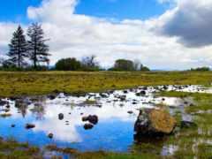камни, landscape, природа