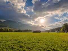 трава, луг, church