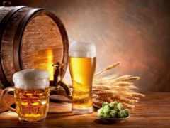 пиво Фон № 27803 разрешение 2560x1600