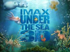море, глубине, под