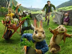 peter, кролик, сниматься