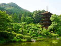 japanese, храм, oir