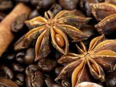 coffee, cinnamon, seed