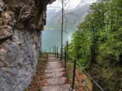 природа, escalera, rock
