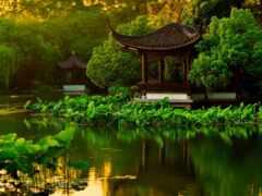китаянка, park, пруд