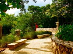 priroda, сады, красивая